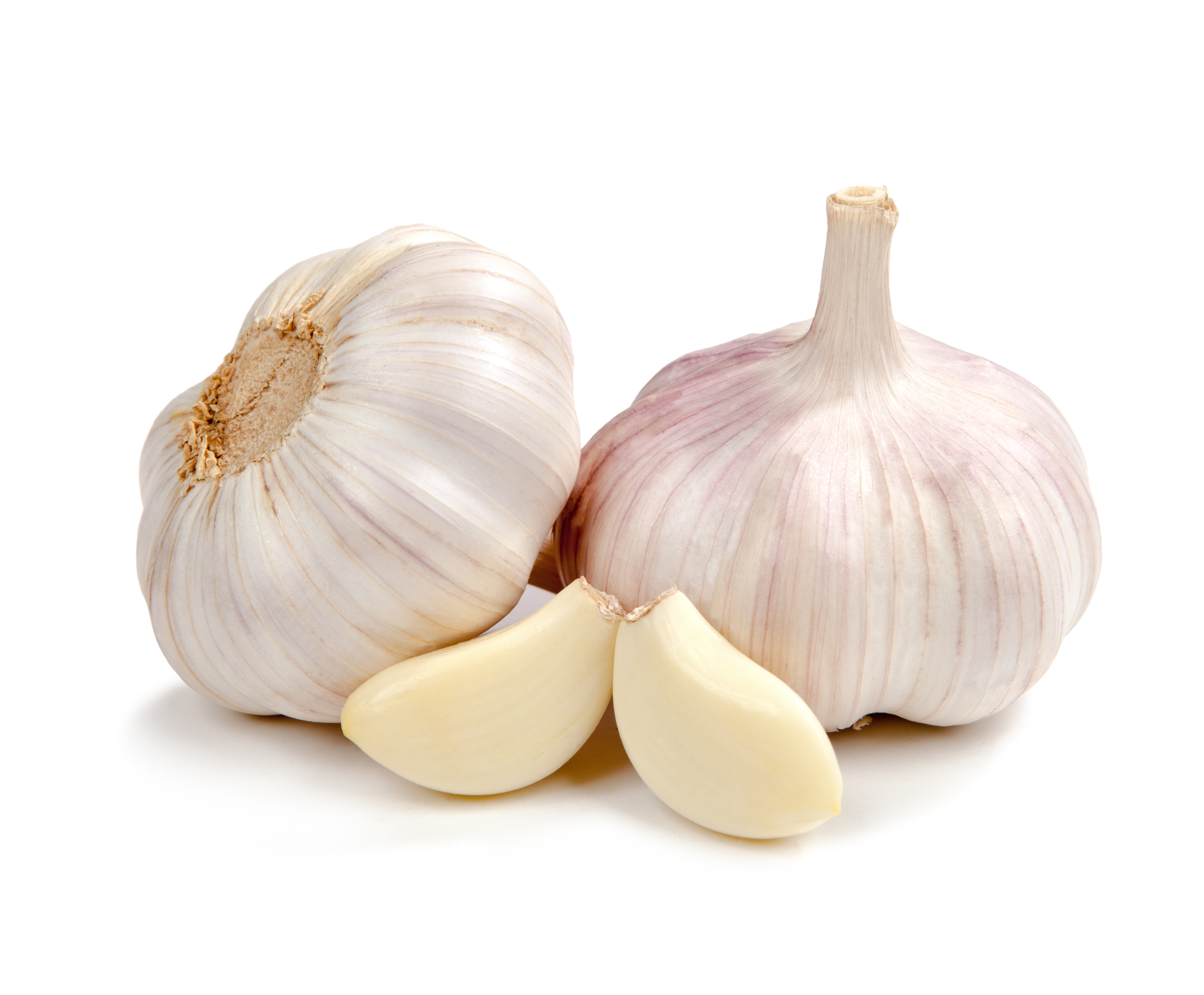 160303 garlic